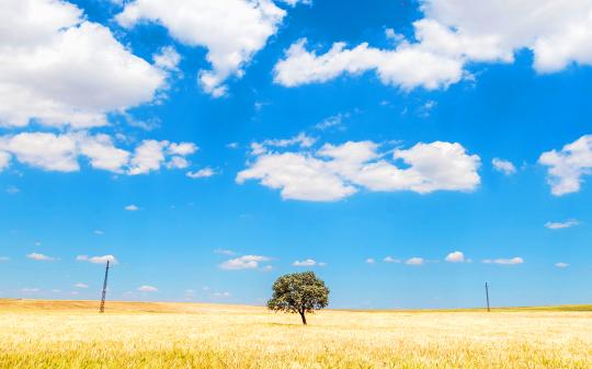 우리 삶에 시나브로 스며드는 변화 문화, 환경, 그리고 기후